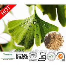 Polvo 100% natural del extracto de Ginkgo biloba de la alta calidad