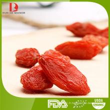 Lycium barbarum polysaccharides Goji Berry / Wolfberry rouge