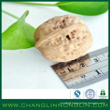 organic food alibaba golden supplier crushed walnut shells