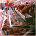 Cage de couche / équipement de volaille de cage de poulets de chair pour la ferme de poulet