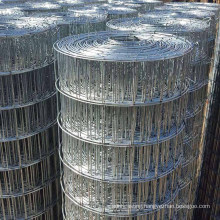 Factory price pvc coated 2x4 welded wire mesh for bird and rabbit cage