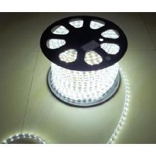 5050 60LED/M 220V 14,4W LED Bande Flexible Haute Tension