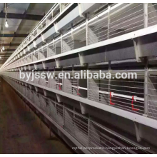Top Selling Chicken Breeding Equipment For Sale