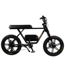 2020 Hot in China Nice fat tire electric bike electric motorbike