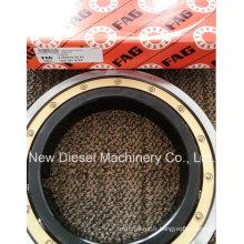 Mtu 396 Diesel Engine Parts Bearing (565635B 5509810725)