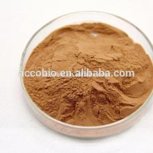 Polvo de planta natural Polvo de bruja de bruja orgánico / Extracto