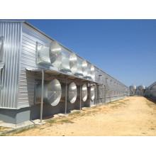 Maison de poulet de couche fermée / hangar de volaille (KXD-SSB64)