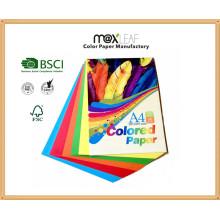 150GSM A4 Taille Bright Color Bristol Board (CB-A4-50FM2)
