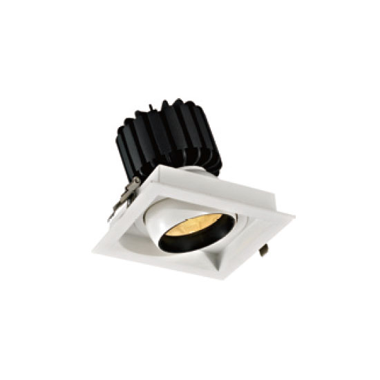 Dimmable Lighting Technology 30W LED Downlight