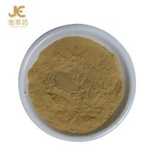 New Promotion 2020 Hot Chinese Plant Extract Zucchini Powder Cucurbita Pepo Powder