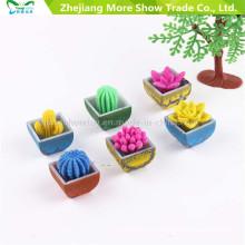 Novedad Crecimiento de agua Plantas Mini Cactus Crecimiento de flores Plantas de mascotas Juguetes