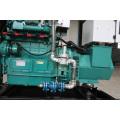 wassergekühlter Großhandel 20kw Erdgasgenerator Preis