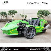 Reverse Trike 250cc Deriva elétrica Trike Deriva Trike Trike rápido