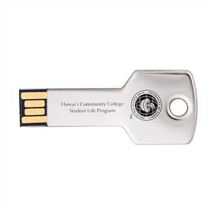 Gold Key USB Stick
