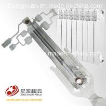 Китайский экспорт софистицированной технологии тонко обработанной алюминиевой радиаторной пресс-формы