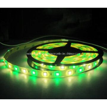 SMD 5060 + 2835 RGB + W Faixa Flexível-96 LEDs / M IP65