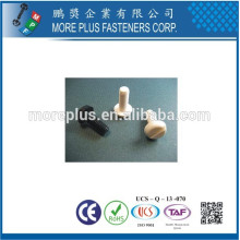 Made in Taiwan Screw Pan Head MPF Vis en plastique