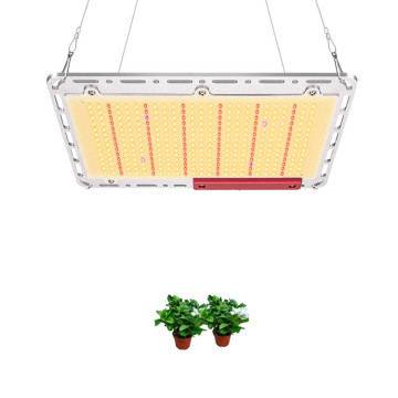 240W Indoor Grow Lights hidroponik dipimpin tumbuh cahaya
