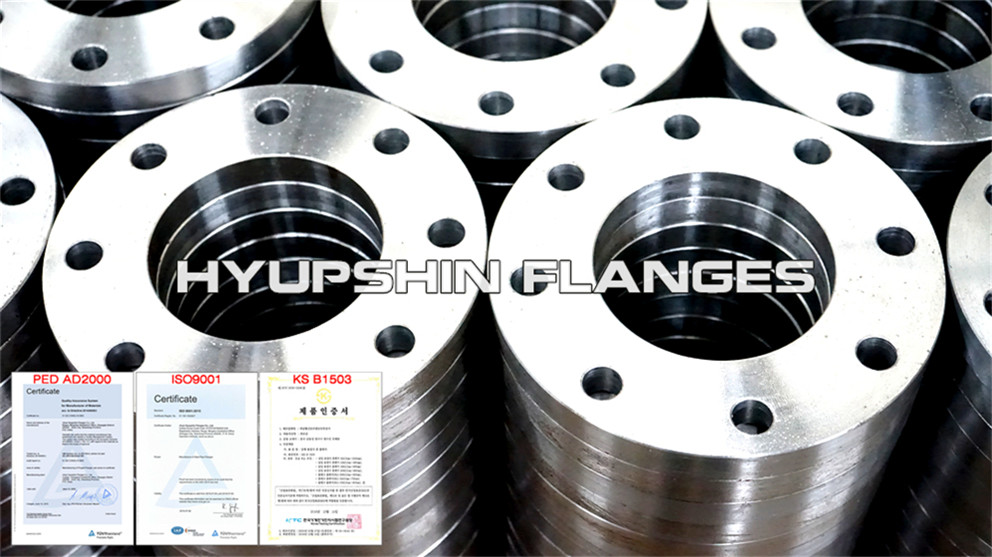 Hyupshin Flanges Slip On Plate Flanges Ff