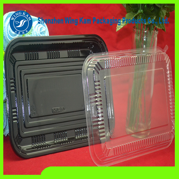 Plateau de fabricant Bento rectangle vente chaude