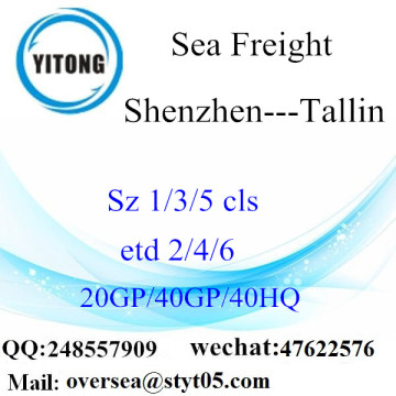 Shenzhen Port Sea Freight Shipping Para Tallin