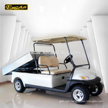 Wholesale 2 Seats golf buggy cheap golf cart for sale Electric mini golf cart