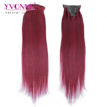 Fashion Color Remy Human Hair Clip in Hair Extensions