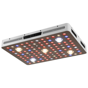 COB Led Grow Lights per piante da interno in crescita