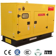 Cost Effective Dynamo Diesel Generator (BU30KS)