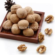 Good Quality Walnuts in Shell 28mm/30mm/32mm up Walnut in Shell Xinjiang Walnuts
