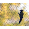 Excelente calidad de protección nueva pe contra red de aves