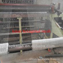 hexagonal wire mesh panel