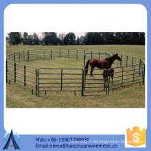 Larga vida utiliza caballo paneles