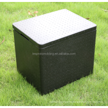 epp food thermo box for tanspoting