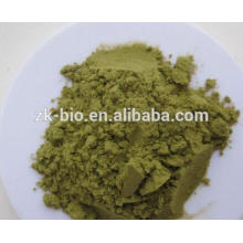 Top quality Organic Kale Juice Powder