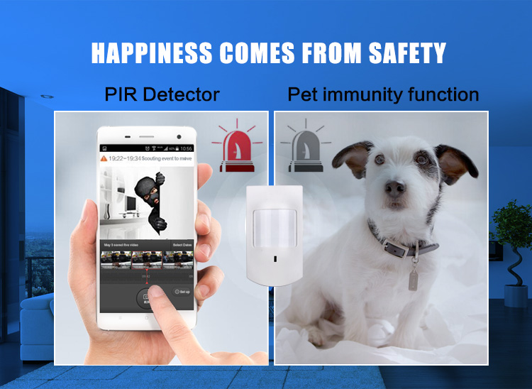 Home Motion Detector