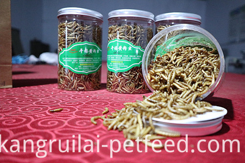 Nutrition Yellow Dried Mealworm