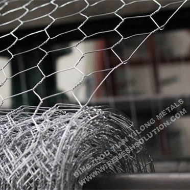 Hot Dipped Galvanized Poultry Netting Chicken Wire Mesh