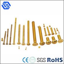 Different Kind Bolt All Kinds of Custom Thread Brass Bolts