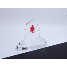 Custom Shaped Acrylic Trophy