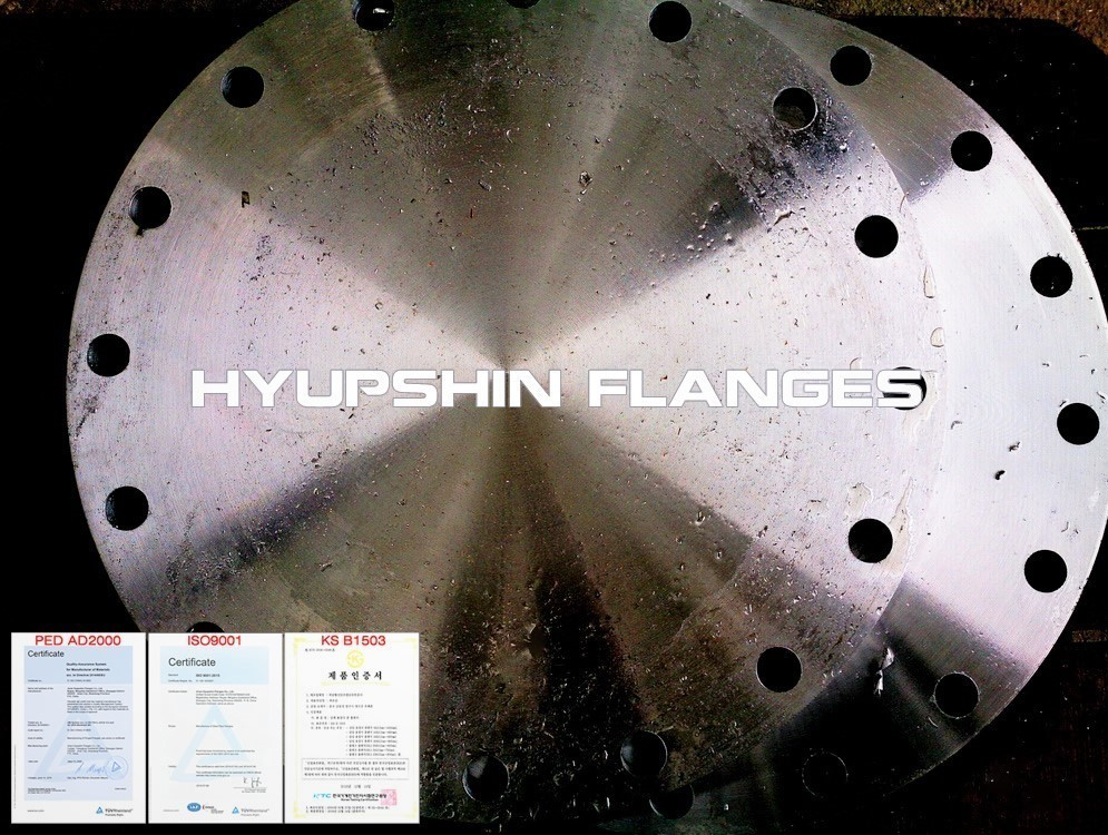 Hyupshin Flanges En1092 1 Type05 Blind