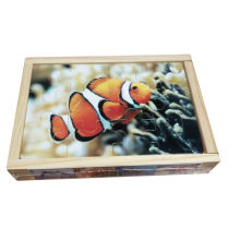 Educational Wooden Puzzle Box 4 in 1 Wooden Toys