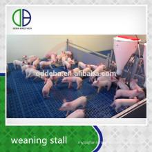Livestock Equipment Weaning Stall Pig Pen Piglet Livestock