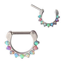 ASTM F136 Titanium Jewelry Nose Septum Clicker Piercing Body Jewelry