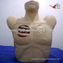 Mannequin de drainage pleural ISO, déneumomie au pneumothorax, modèle thoracocentèse