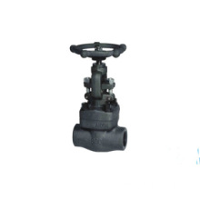 Forged Steel Gate Globe Check Valve