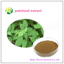 Factory Supply Directly Herba Pogostemonis P. E. Patchouli Extract