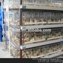 qualidade industrial galinheiro fazenda fornece equipamentos de aves para venda