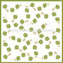 Ручной печатный небольшой площади 100% шелковый шарф Горячие новые продукты для 2014