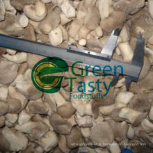 Nouvelle Crop IQF Fresh Baby Oyster Mushroom